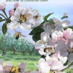 Wild-Pollinators-Cover